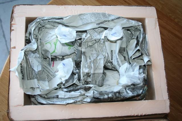 Tutoriel sur l'envoi de poissons par colis postal Img_3925