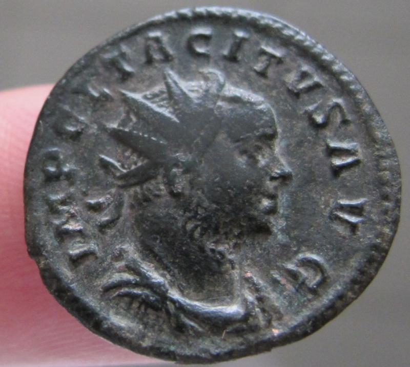 carus - Tacite, Florien, Carus, Numérien, Carin Img_8312