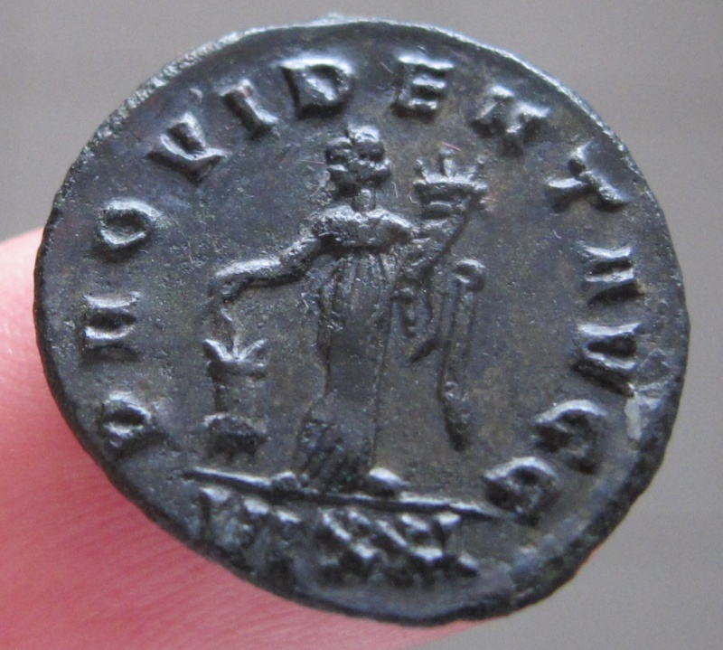 carus - Tacite, Florien, Carus, Numérien, Carin Img_8321