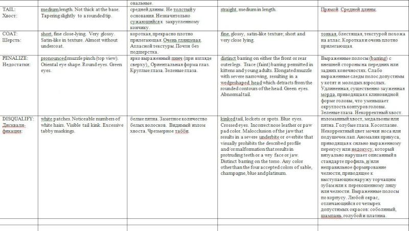 Бурманская - Американская и Европейская. Две породы - два стандарта. 3-dydd10