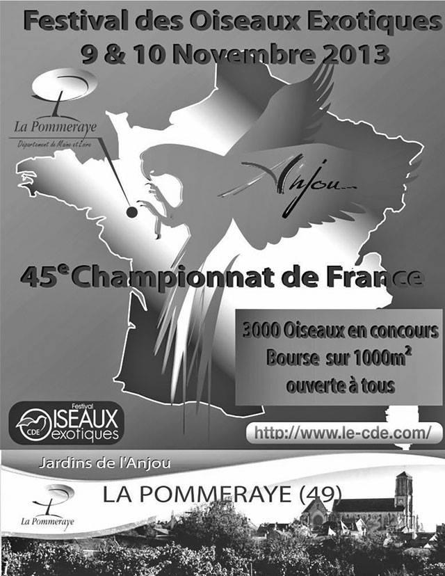Championnat de France CDE 2013 Affich12