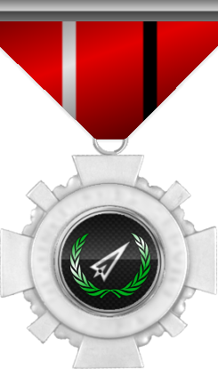 Distinguished Action Medal. This medal is awarded to a member who distinguished by his/her actions beyond duty.