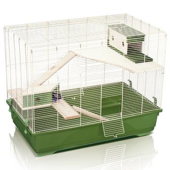 cherche cage pour 3 rats ( a cloturer) 143-7510