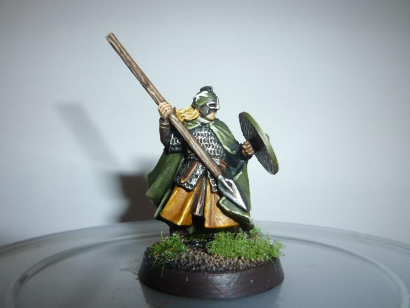 Armée du Rohan (par Sanglebouc) P1020810