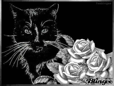 photos en noir et blanc - Page 16 43293_10