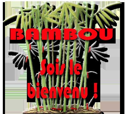 Présentation de Bambous4  Bambou10
