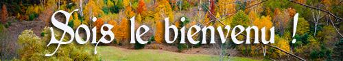 Bonjour de Pipewhistler de Bretagne Bienve64
