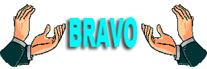 Mes travaux de réparation et création - Page 2 Bravo_82