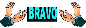 Pipe de Bois Bravo_89