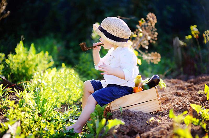Concours photo : la pipe au jardin (été 2020) Concou10