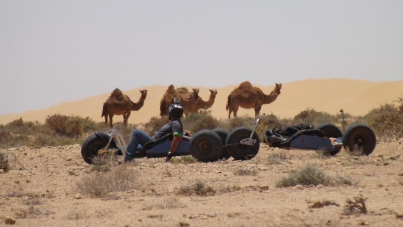 Maroc Avril 2013 Dscf2710