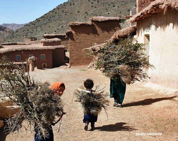 Pull  Femme - femme Amazigh berbere ma chérie  المرأة الامازيغية  Mimoun13