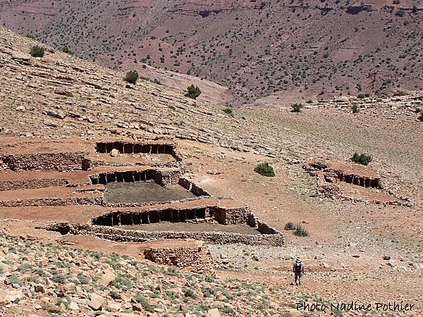 Pull  Femme - femme Amazigh berbere ma chérie  المرأة الامازيغية  Mimoun16