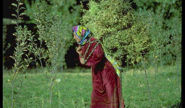Pull  Femme - femme Amazigh berbere ma chérie  المرأة الامازيغية  Mimoun24