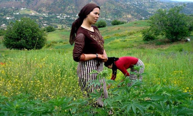Pull  Femme - femme Amazigh berbere ma chérie  المرأة الامازيغية  Mimoun28