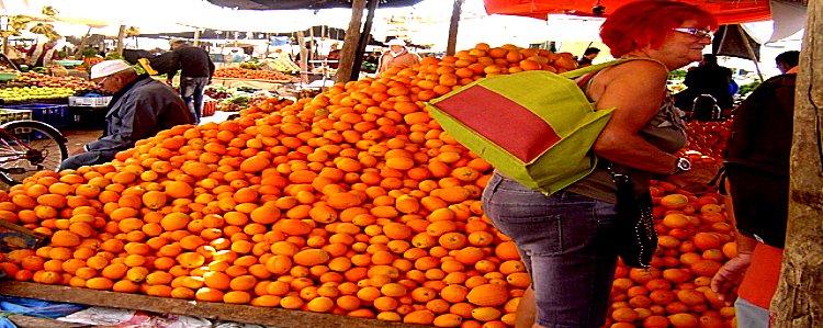 Le Maroc pays d'accueil des campeurs motorisés Mimoun40