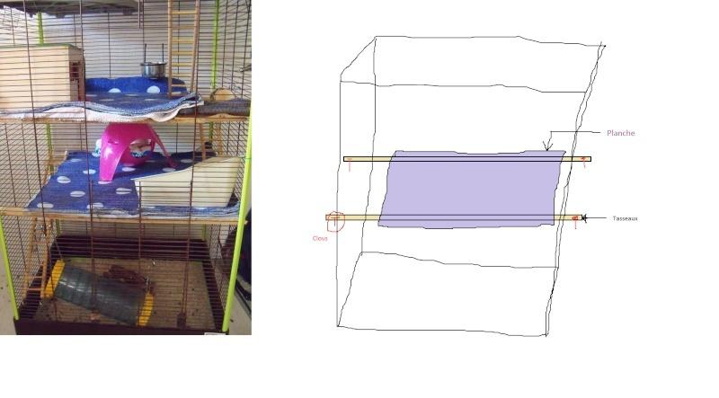 recherche de cage  - Page 3 Etage_10