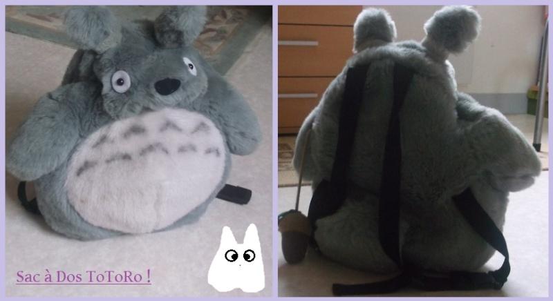 ~ Petite vente en ligne ~ Totoro10