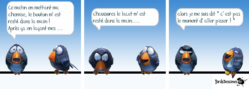 Les Birds - Page 4 13668810