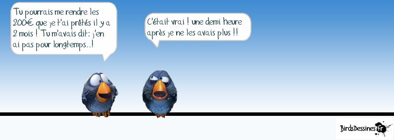 Les Birds - Page 4 13676510
