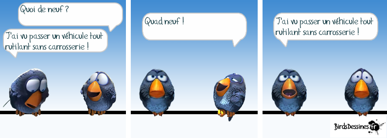 Les Birds - Page 4 13680110