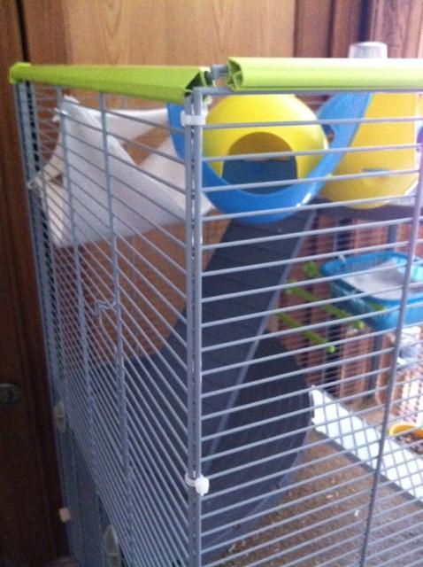 Le nid douillet de mes pioupiou Photo_15