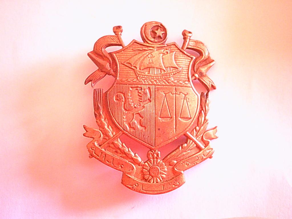 insigne colonial? Dscf0022