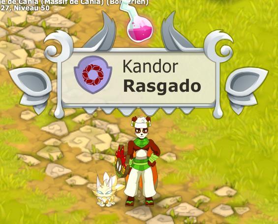Rasgado Pandawa multi éléments niveau 150 Skin10