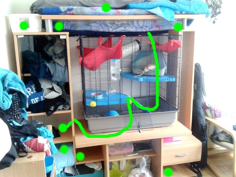 Mon système meuble pour rat ! 2013-011