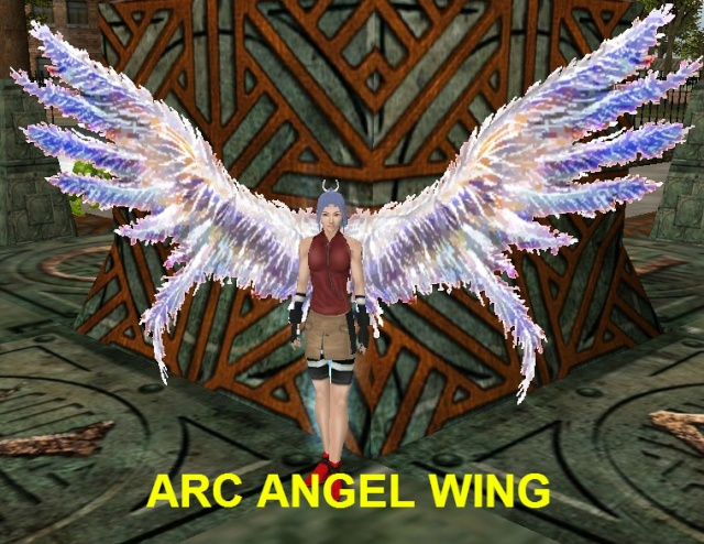 DONATE/VP WINGS Arc_an10