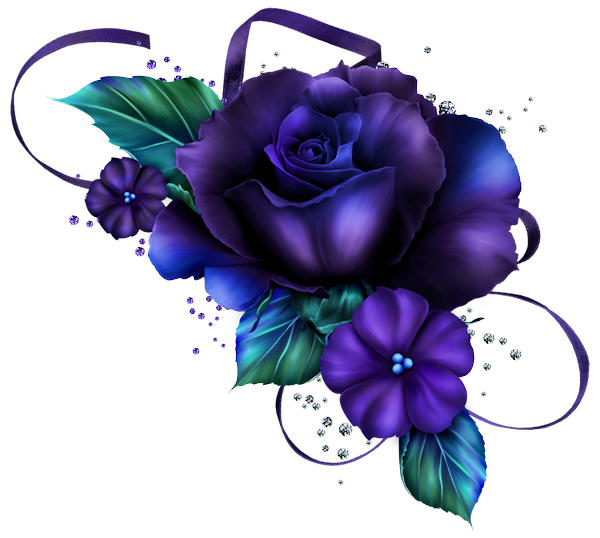 Une fleur un arc en ciel ... Violette  D37b9510
