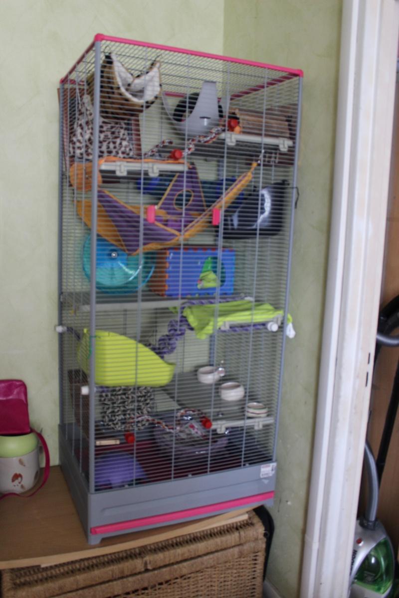 Aide pour aménagement de cage. Img_0710