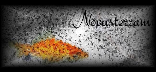 Novusterram