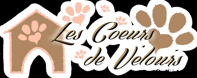 Les Coeurs de Velours   Protection Animale   Nîmes - Alès - Cahors - Figeac
