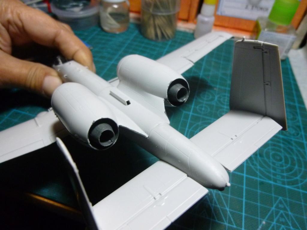A-10 THANDERBOLT II P1030317