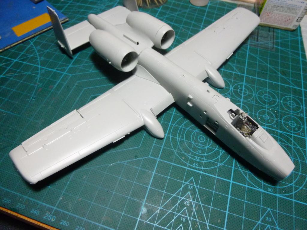 A-10 THANDERBOLT II P1030318