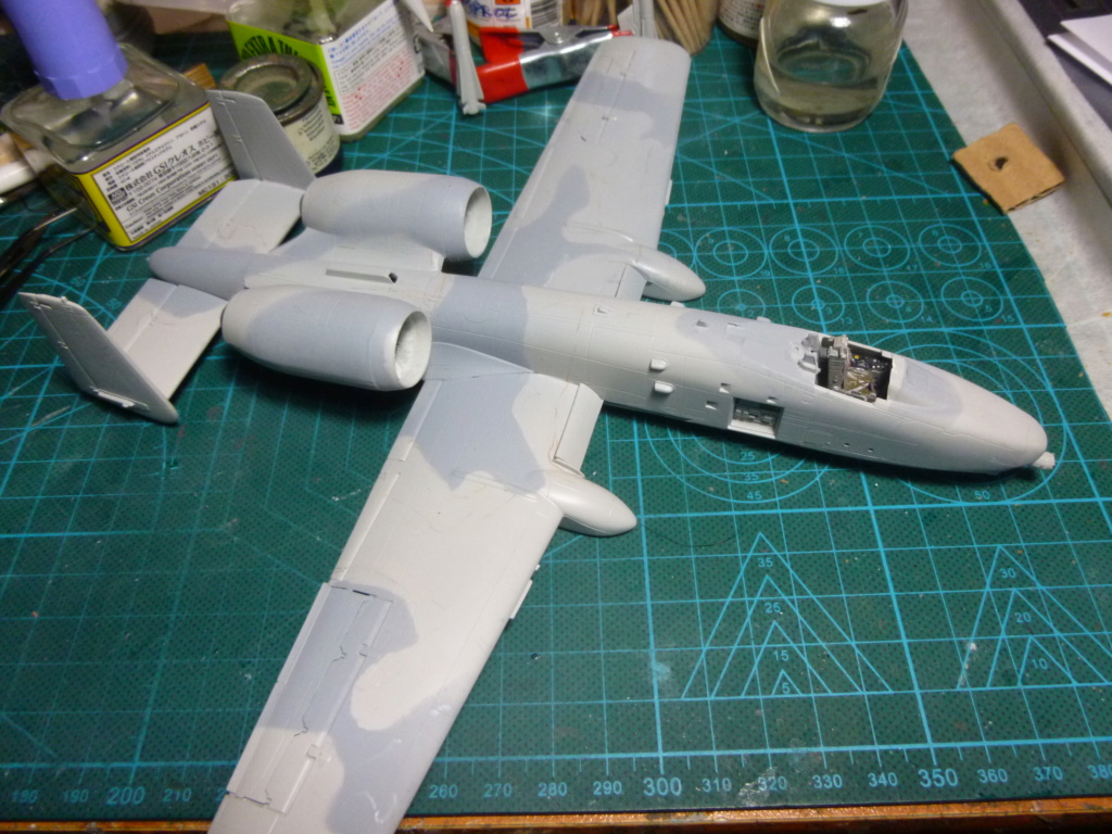 A-10 THANDERBOLT II P1030320