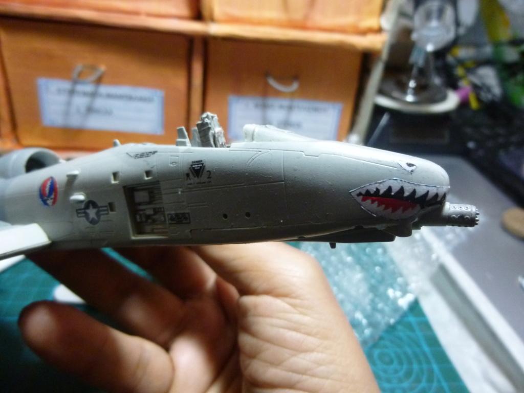 A-10 THANDERBOLT II P1030321