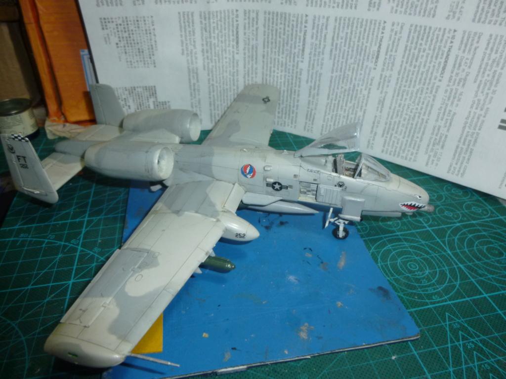 A-10 THANDERBOLT II P1030325