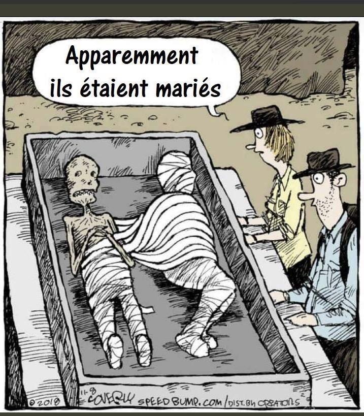 humour du jour - Page 15 Captu763