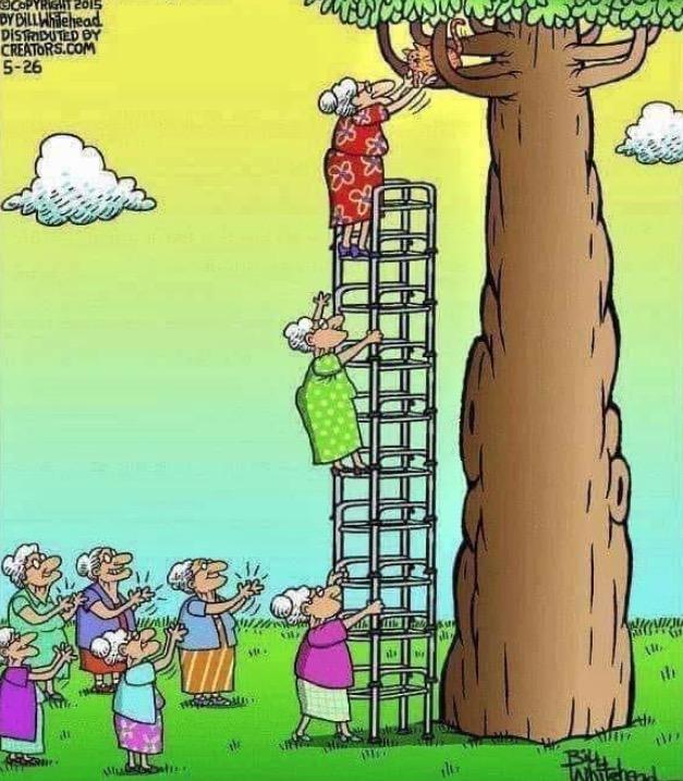 humour du jour - Page 28 Captu860