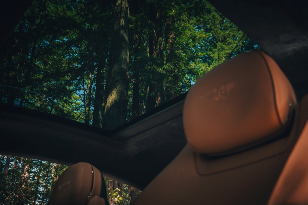 2017 - [Bentley] Continental GT - Page 7 Bentle43