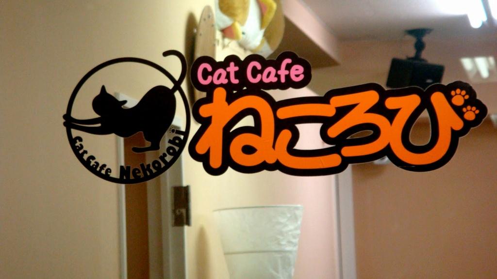 Cat Café Cat_ca10