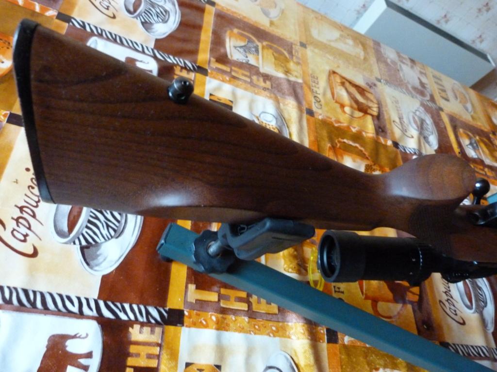 Rénovation CZ527 P1090612