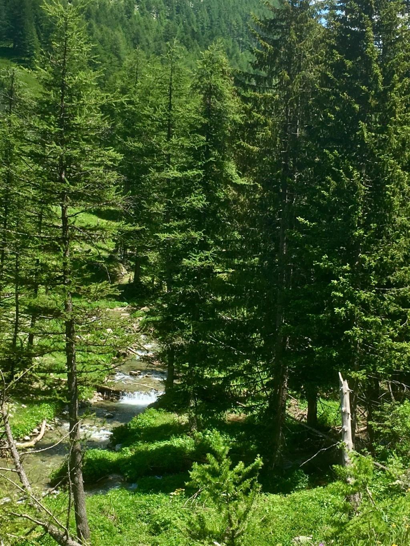 Col de la Lombarde frontière franco-italienne 14fd9810