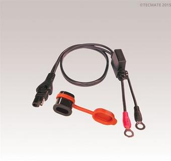 Branchement chargeur autonome sur batterie Captur13