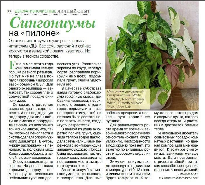 статьи о растениях из  газет и журналов - Страница 8 87420510
