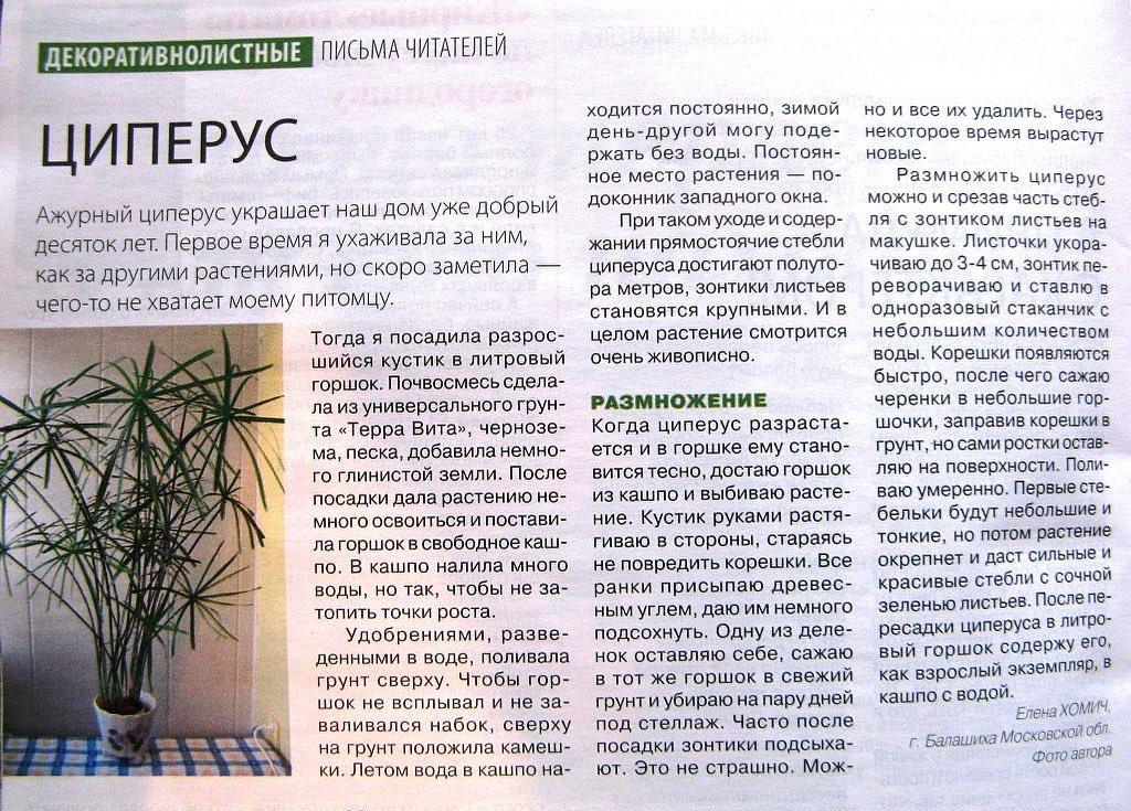 статьи о растениях из  газет и журналов - Страница 8 94709410