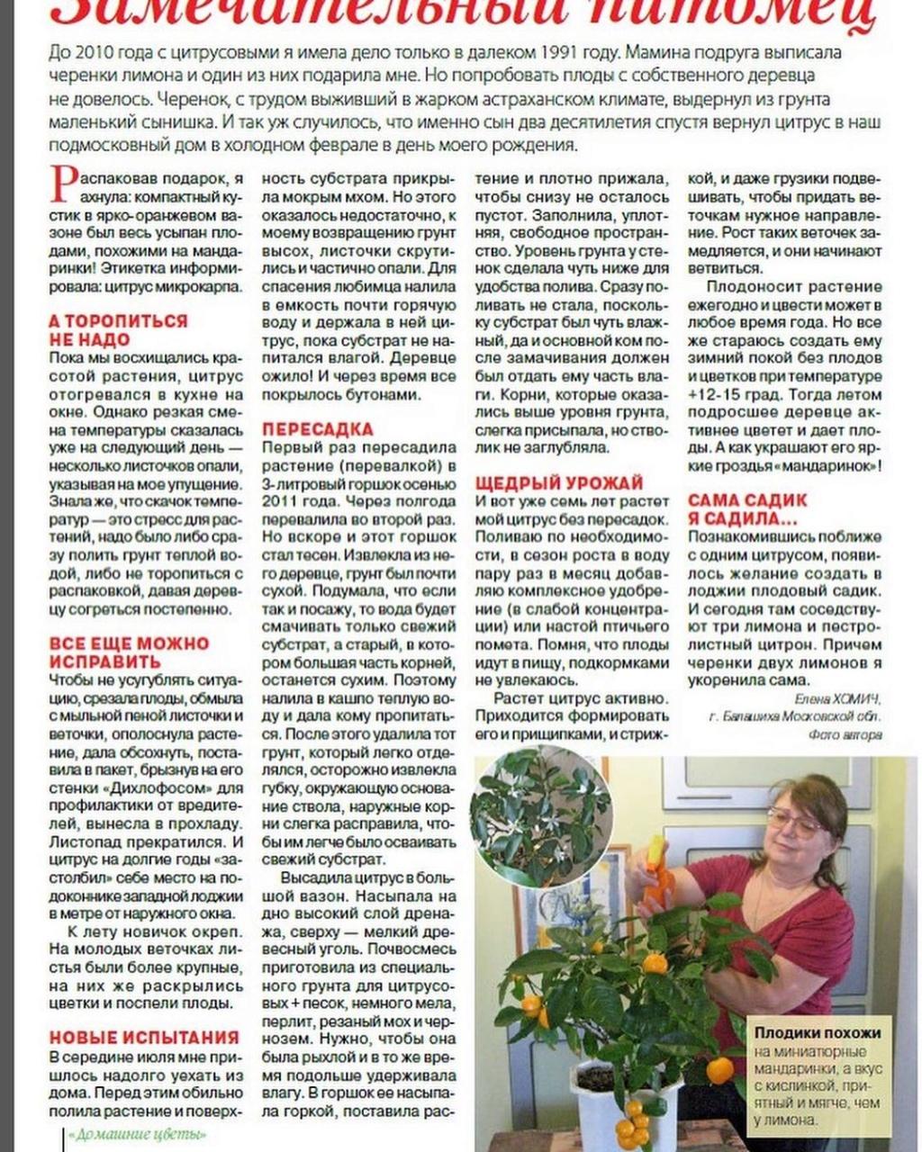 статьи о растениях из  газет и журналов - Страница 8 97335511