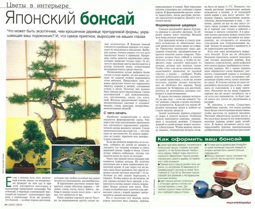 статьи о растениях из  газет и журналов - Страница 8 Y7_wii10